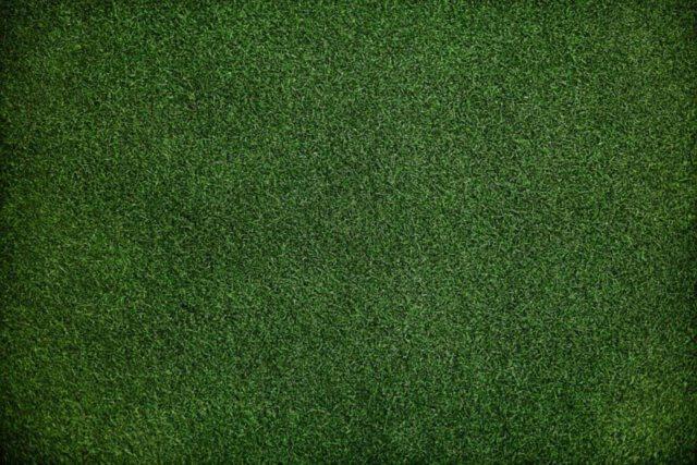 urządzenia pomocne w jesiennej pielęgnacji trawnika